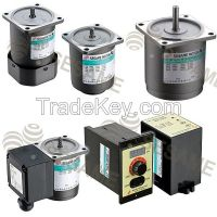 AC Separated Type, Variable Speed, Induction Motor