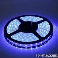 Factory Direct Sales Super Bright LED Strip