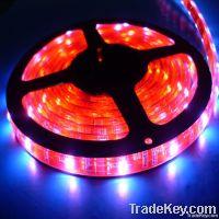 Factory Direct Sales Super Bright LED Strip