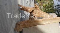 INDIAN WHITE SANDAL WOOD