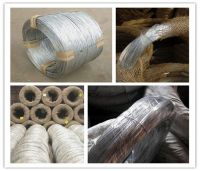 galvanized wire (factory price)