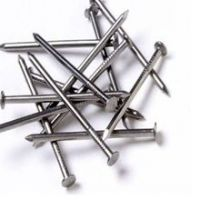 Polished Flat Round Head Common Nails With Good Quality