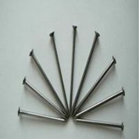 High Quality Polish Wire Nails