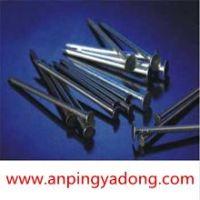 Low Price Galvanized  Nail
