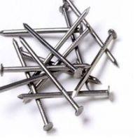 Cheap Galvanized  Nail