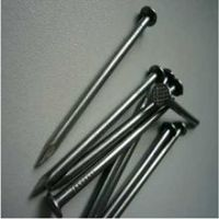Galvanized or Polished Common Nail