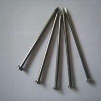 Hot sales! Common Nail Iron Nail Factory