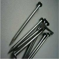 ISO9001 Galvanized  Nail