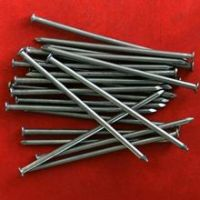 Factory Outlet Galvanized  Nail
