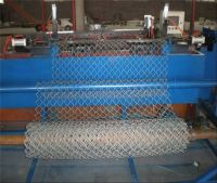 Welded Gabion/Welded Gabion Basket/Welded Gabion Box For Sale