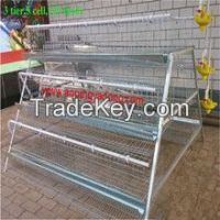 poultry battery cages/poultry battery cage system/poultry cages