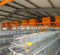 Cuboid Transport Chicken Cage on Promotion