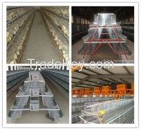 2013Hot Sale Poultry Chicken Cage (Factory)