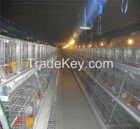 Chicken Cages