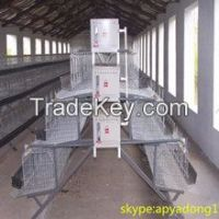 Battery cage for Nigerian poultry farm