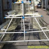 galvanized welded wire high quality poultry chicken cage