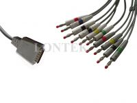 Hellige ECG Cable