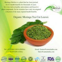 Moringa Tea Cut Leaf ORGANIC