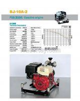 Gasoline engine BJ-10A-2