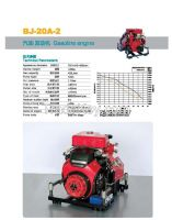 Gasoline engine BJ-20A-2