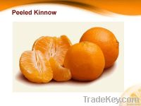 Citrus Fruit Fresh Mandarin (Kinnow)
