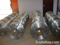Galvanized Iron Wire(hot dip & electr galvanized)