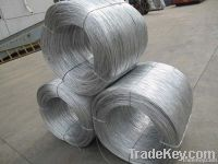 Galvanized Wire(hot dipped & electro galvanized)