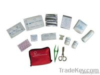 First Aid Kit (family)