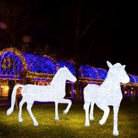 New coming special design Led 3D light horse