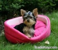 Polar fleece pet bed for dogs&cats