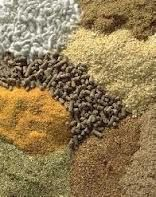 Animal Feed, Chicken Feed | Meat & Bone | Fish Meal | Soybeans Meal | Corn Gluten Meal | Corn Meal 50% Protein