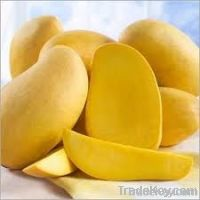 Fresh Greenfield Mango