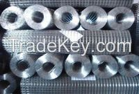 hot sale  Gavanized welded wire mesh