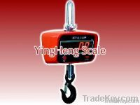 export Direct-view electronic crane scale