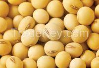 Soybean Grade 2
