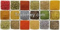 Rice, Wheat, Maize, Sugar, Pulses, Salt and Spices