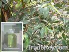 Natural Eucalyptus Oil