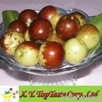 Winter Dates Fruits