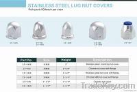 Stainless Steel Lug Nut Covers