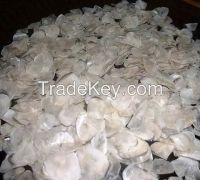 Dried Fish Scale and Buffalo & Cow Bone