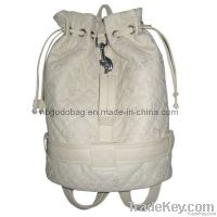 Anti-Static Bag