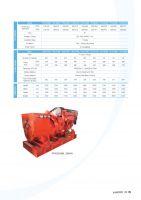 Diesel Generators for Marine application PPN80DM
