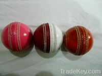 Practice Cricket Balls for Training and Coaching