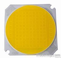 Ceramic COB LEDs LCOB50