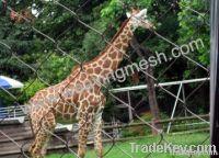 animal enclosure, bird cage, aviary mesh, zoo bird netting