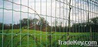 Welded Euro Fence