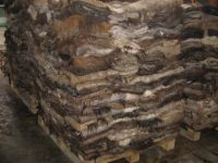 TOP QUALITY SALTED DONKEY HIDES FOR SALE,