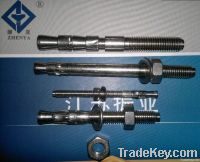 stainless steel AISI304/316L A2 A4 wedge anchor