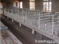 Pig Farm Equipment