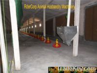 poultry pan automatic auger feeding system